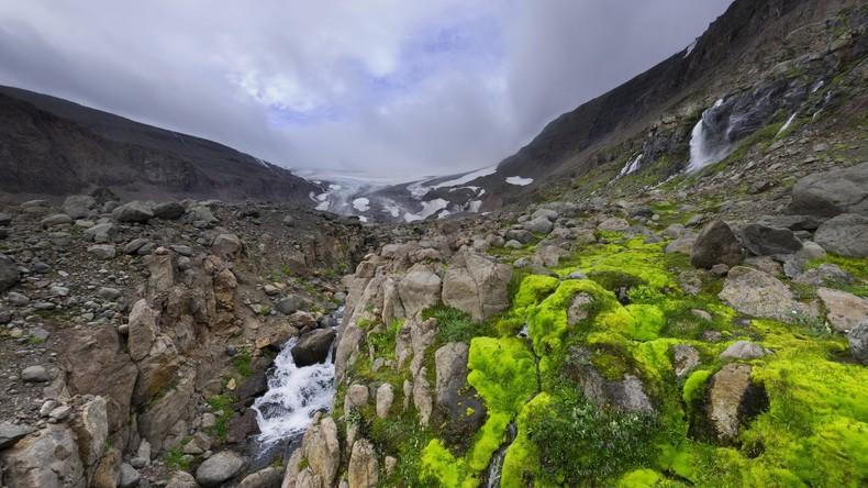 Nach 40.000 Jahren im Permafrost: Uralte Lebensformen der Erde erwachen zu neuem Leben