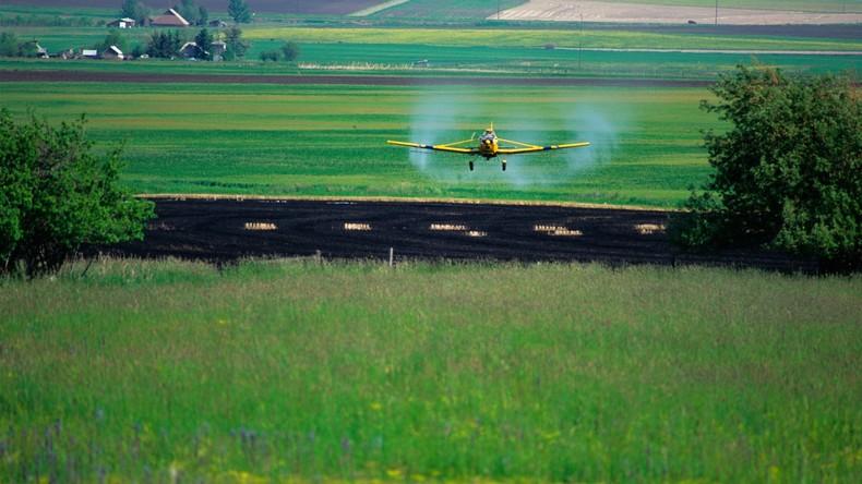 Immense Schäden: Israels Herbizide treffen nicht nur palästinensische Landwirte