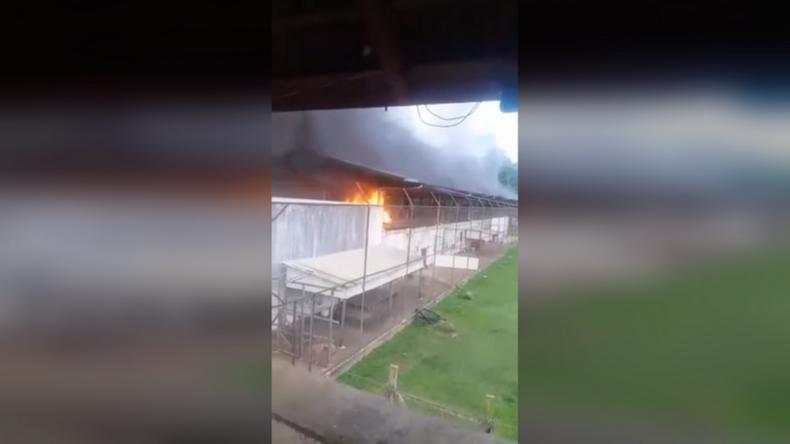Brasilien: Schwere Kämpfe in Gefängnis ausgebrochen – mindestens 57 Tote, 16 davon enthauptet