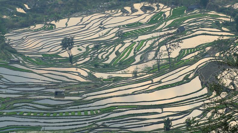 China bewässert größte Landmasse der Welt und erzeugt 55 Milliarden Tonnen Regen im Jahr