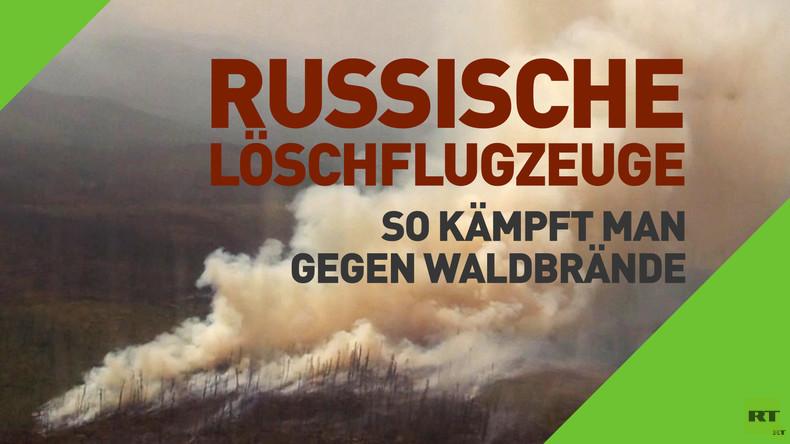 Russische Löschflugzeuge: So kämpft man gegen Waldbrände