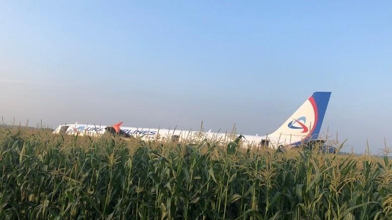 Russland: Passagierflugzeug mit über 230 Insassen macht Bauchlandung in einem Maisfeld