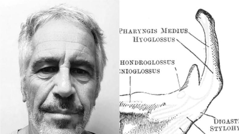 Nach Autopsie an Epstein: Experte schließt Mord nicht aus
