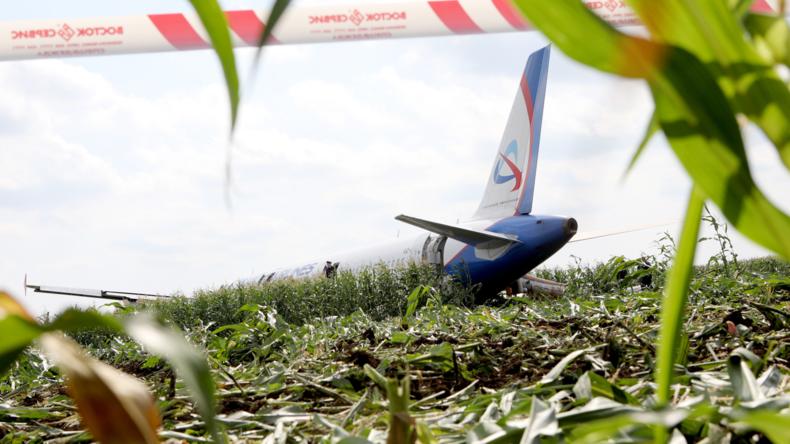 Bauchlandung bei Moskau: Airbus mit über 230 Insassen landet nach Vogelschlag in Maisfeld (Video)