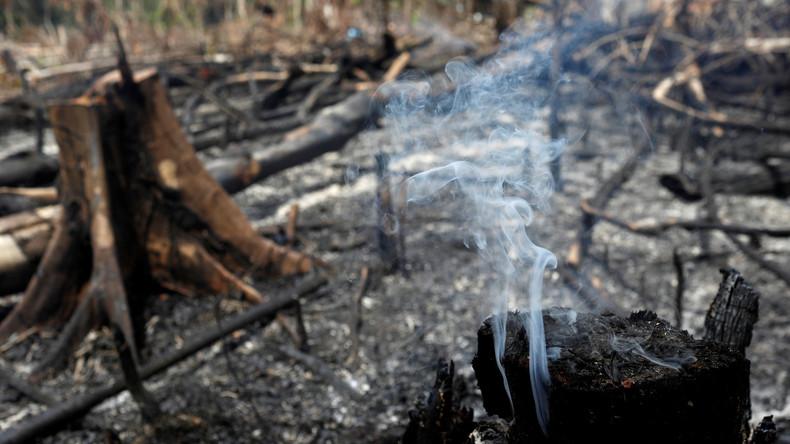 Waldbrände in Amazonien – Bolsonaro schiebt die Schuld auf Umweltschützer