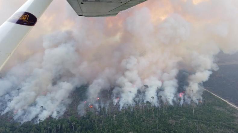 Brasilien: Luftaufnahmen zeigen das Ausmaß der Regenwaldbrände am Amazonas