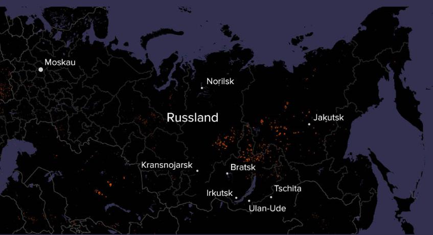 Erderwärmung, Kriminelle oder Fahrlässigkeit: Warum brennen die Wälder in Sibirien?