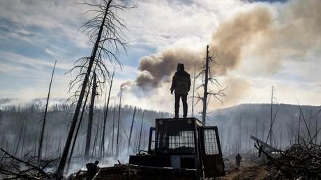 Die Folgen eines Waldbrandes in der sibirischen Region Burjatien im Jahr 2017
