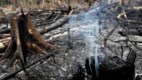 Waldbrand im Bundesstaat Amazonas am Mittwoch