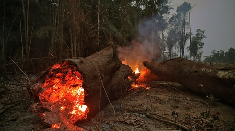 Soldaten bekämpfen Flammen im brasilianischen Regenwald