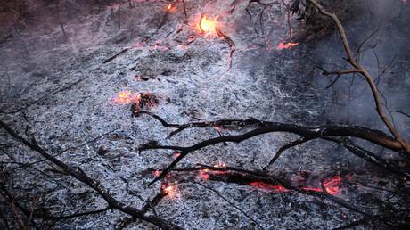 Ein Teil des brennenden Amazonas-Dschungels in Canarana, Bundesstaat Mato Grosso, Brasilien, 26. August 2019.
