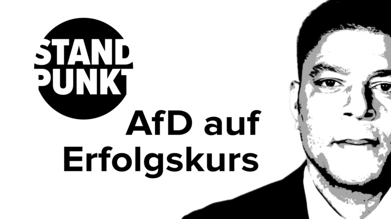Alternativlos marktradikal: Die AfD auf Erfolgskurs (Video)