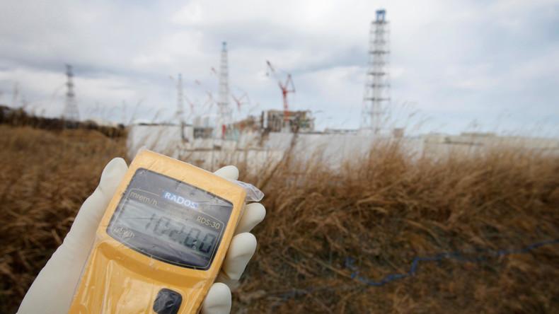 """""""Tsunami nicht vorhersehbar"""": Freispruch in Japan für ehemaligen Atommanager Fukushimas"""
