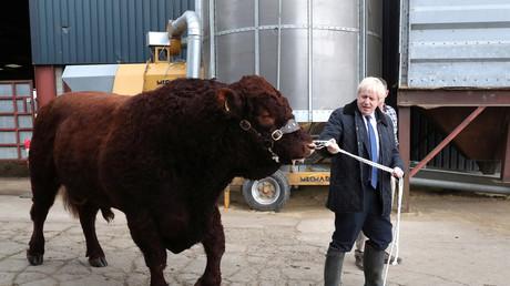 Der britische Premierminister Boris Johnson bei dem Besuch der Danford Farm in Schottland, Großbritannien, 6. September 2019