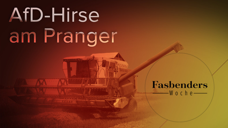 Fasbenders Woche: AfD-Hirse am Pranger