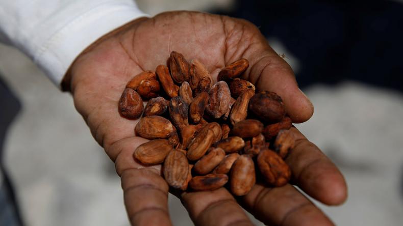 Vorwurf der Kinderarbeit bei bekannten Schokoladenfabrikanten: Ferrero, Godiva, Lindt und Hershey