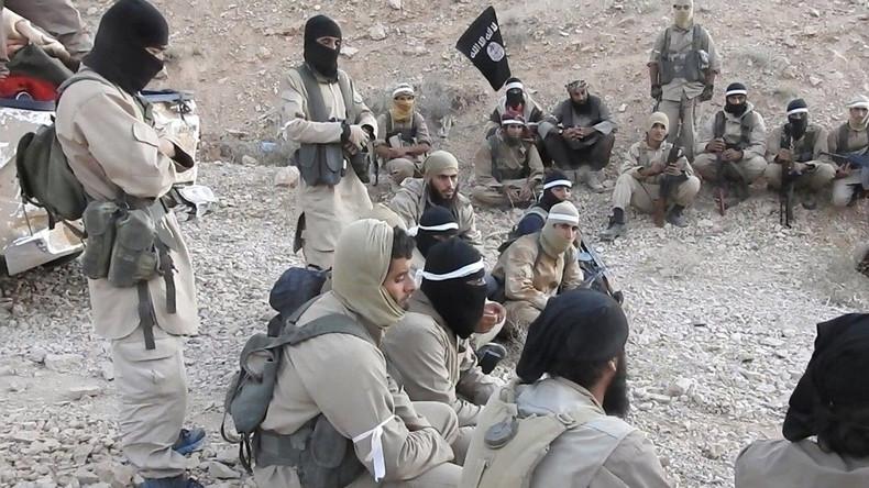 Assads Beraterin: Durch Syrien-Invasion der Türkei besteht Gefahr des Wiederauflebens des IS (Video)
