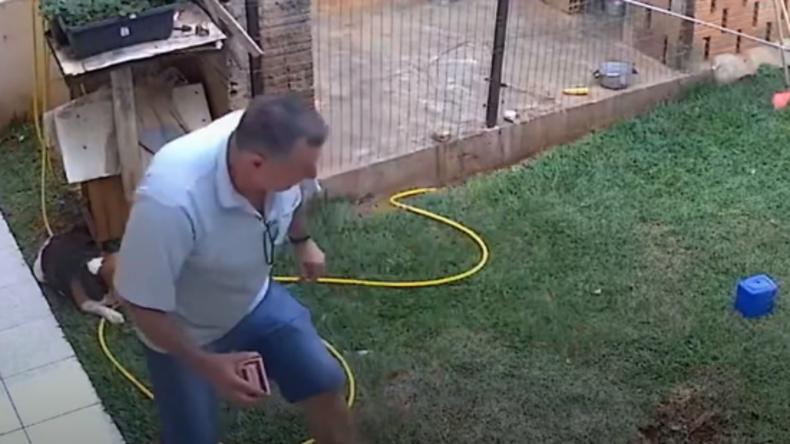 Mann will Kakerlaken erledigen – und sprengt aus Versehen Garten