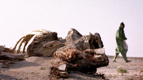 Dürre im Iran, Zabol, 26.07.2001.