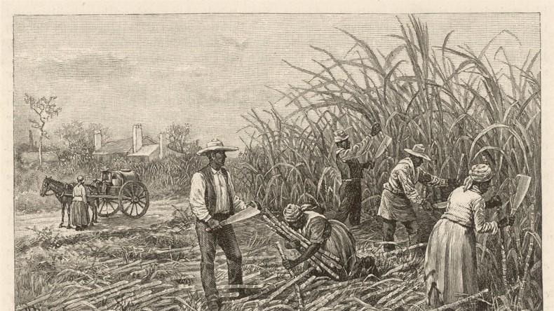 US-Debatte im Kongress über Reparationen für Sklaverei am Beispiel Deutschlands nach dem Holocaust