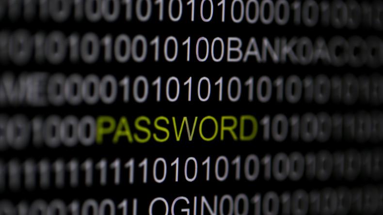 Israel liefert vermeintlichen russischen Hacker an USA aus