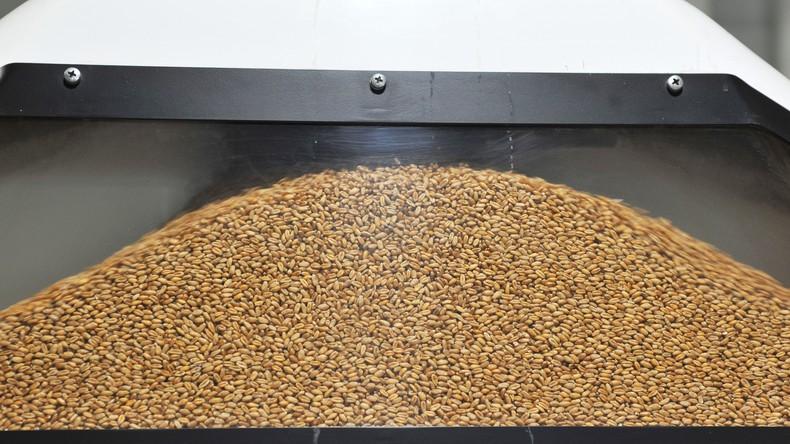 Syrien will 5.000 Tonnen Getreide von der Krim kaufen