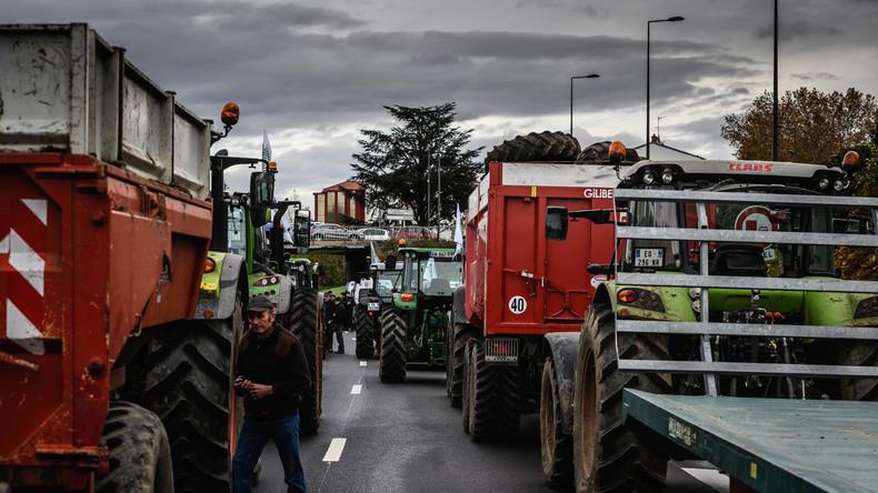 Auf beiden Seiten des Rheins äußern die Bauern ihren Ärger und ihre Not