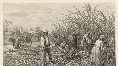 Das Gesamtvermögen der Nation beruht auf  unbezahlter Arbeit von Männern und Frauen, die oft gefoltert wurden, um härter zu arbeiten