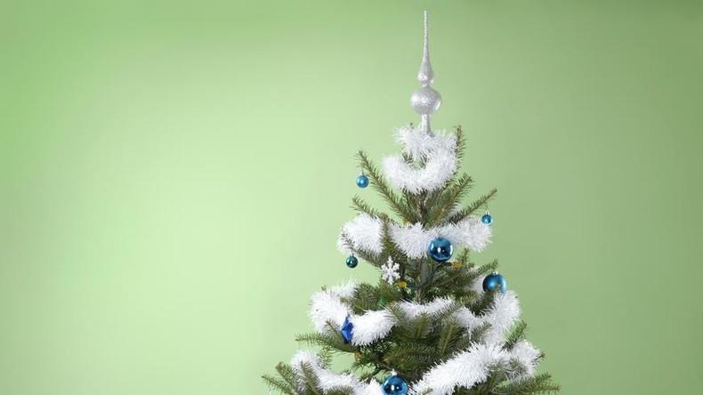Weihnachtsbaumschmuck einmal anders: Schlängelnde Girlande überrascht Paar in Australien