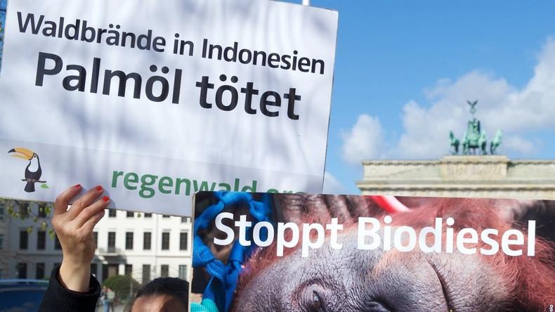 Protektionismus oder Umweltschutz? EU erhebt Zölle auf Biodiesel mit Palmöl (Video)