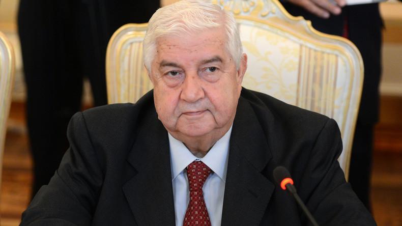 Syriens Außenminister: USA  benutzen den IS als Vogelscheuche (Video)
