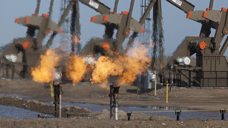 """DIW für """"Klimazölle"""" als Antwort auf US-Sanktionen gegen Nord Stream 2"""