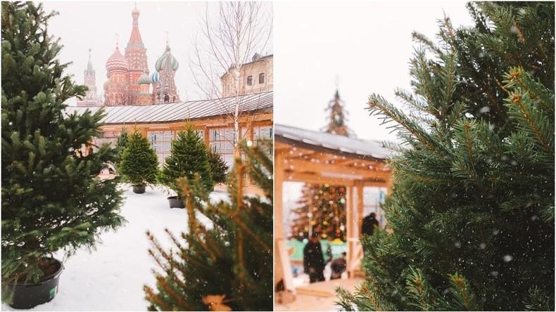 Kunstschnee und Weihnachtsbäume in Töpfen: Habt ihr euch Winter in Moskau so vorgestellt?
