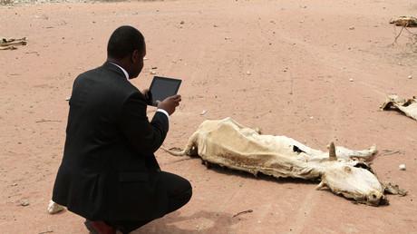 Symbolbild: Ein Mitarbeiter einer Hilfsorganisation filmt den Kadaver einer Kuh nahe der Grenze zwischen Kenia und Somalia, 23. Juli 2011.