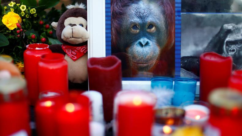 Brand im Krefelder Zoo: Polizei ermittelt gegen drei Frauen, Tierfreunde helfen Zoo mit Spenden