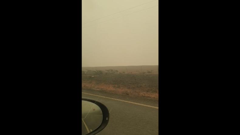 Australien: Flammen verschlingen Millionen Tiere – Autofahrer filmt schreckliches Ausmaß