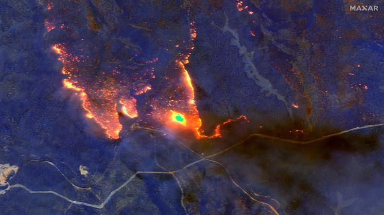 Brandstiftung oder Klimawandel? Hunderte Festnahmen wegen Buschfeuern in Australien