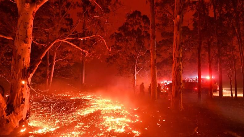 Mitten aus dem Feuer: Aufnahmen aus Australien schockieren die Welt (Video)