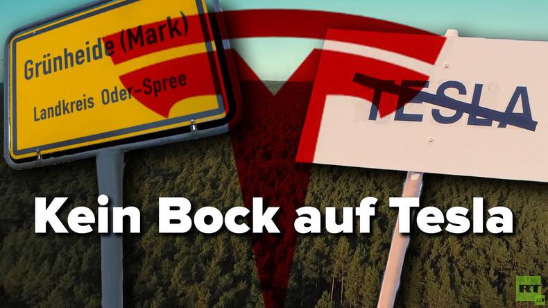 Kein Bock auf Tesla? – RT Deutsch befragt Brandenburger zum Mega-E-Auto-Projekt