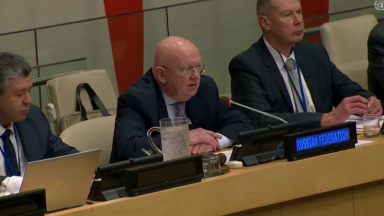 """UN-Sicherheitsrat: Russland nimmt Theorie über """"Chemiewaffen-Angriffe in Syrien"""" auseinander"""