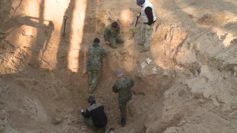 Polen: Überreste eines sowjetischen Bombers aus Zweiten Weltkrieg im Wald entdeckt