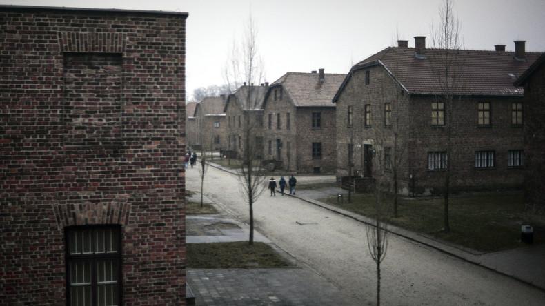 """""""Brandgeruch war überall unser Begleiter"""": Zeitzeugen erinnern sich an Auschwitz-Befreiung (Video)"""