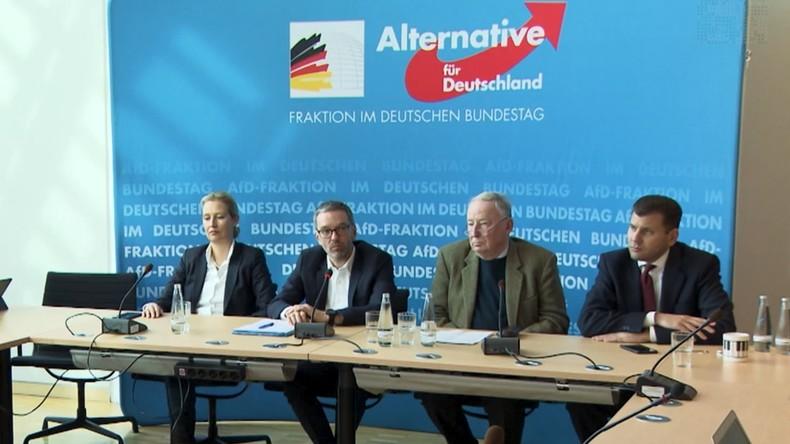 """""""Grenzschutz in Europa"""": AfD und FPÖ wollen Zusammenarbeit intensivieren (Video)"""