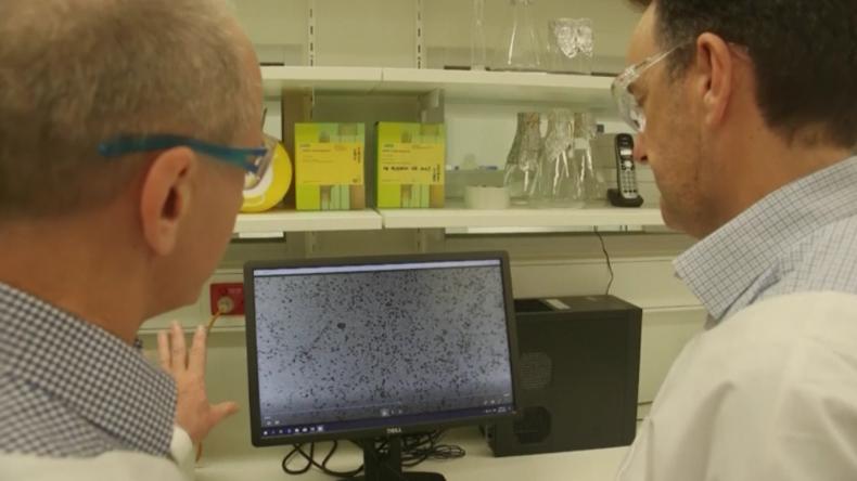 Australien: Haben Coronavirus im Labor gezüchtet, nun arbeiten wir an einer Impfung