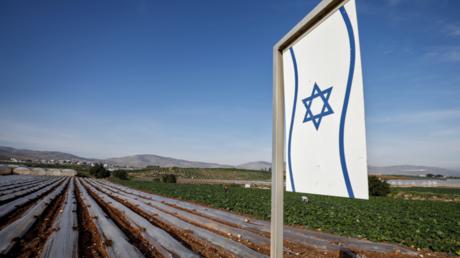 Ein von palästinensischen Bauern bestelltes Feld in Bardalah im Westjordanland wird von israelischen Siedlern beansprucht (Bild vom 27. Januar).