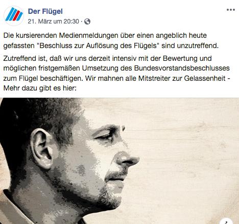 """""""Täuschungsmanöver"""": Streit um mutmaßliche Auflösung des AfD-""""Flügels"""""""