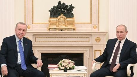 Gut getrollt, Löwe! Putin empfing Erdoğan im Zeichen der russisch-türkischen Kriege