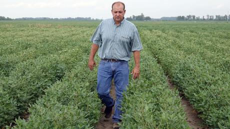 Ein US-Farmer zwischen seinen von Dicamba-Einträgen geschädigten Sojapflanzen