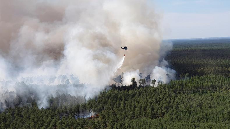 """Auch 2020 wird ein Waldbrandjahr – nicht nur in Brandenburg bereits jetzt """"knochentrocken"""""""