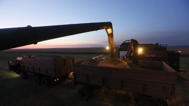 Bringen russische Getreideexportbeschränkungen die globale Ernährungssicherheit in Gefahr?